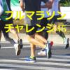 フルマラソン初心者のオッサンがサブ4.5に挑戦していく記録