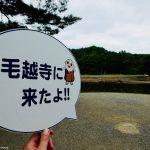平泉の旅、半日でどこまで巡れるか。毛越寺で感じる平安庭園編