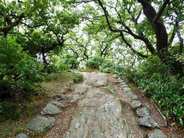 和歌浦の妹背山の登山道2