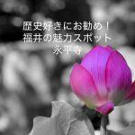 【永平寺編】歴史好きにお勧め。福井の魅力スポットを1日で巡る