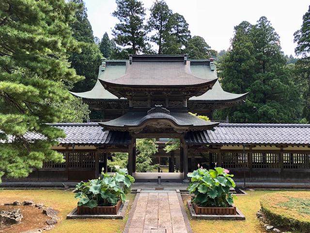 仏殿から中雀門方面。向こうに山門が見えます