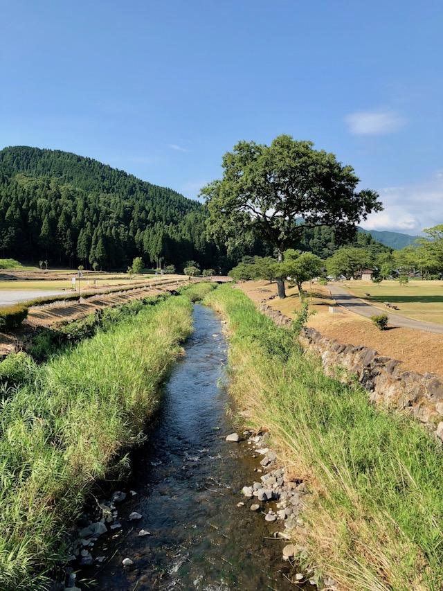 一乗谷を流れる一乗川