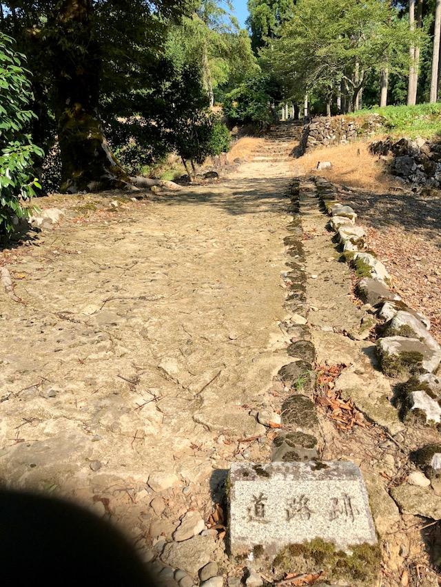 一乗谷の道路跡遺構